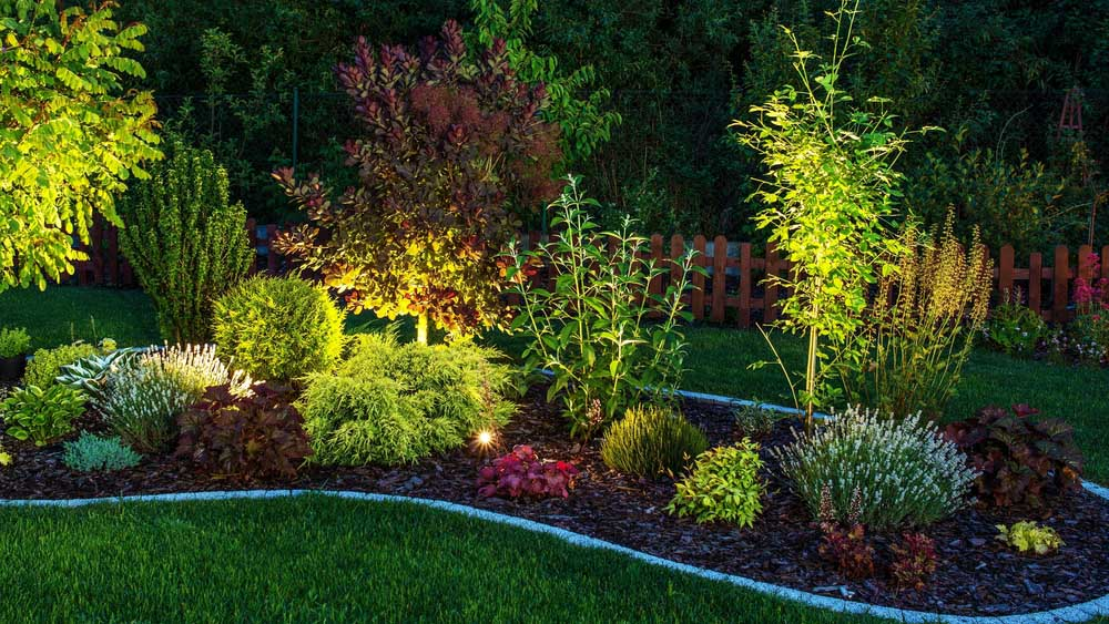 Landscape Lighting In Garden Yard Washington DC