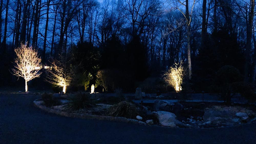 Uplighting In Silver Spring MD after we install outdoor lighting