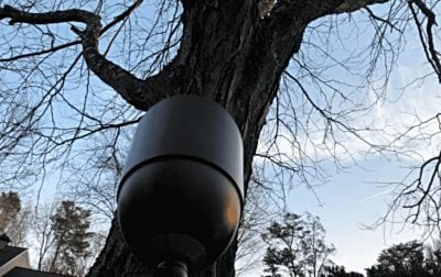 Silver Spring uplight focused on a large tree
