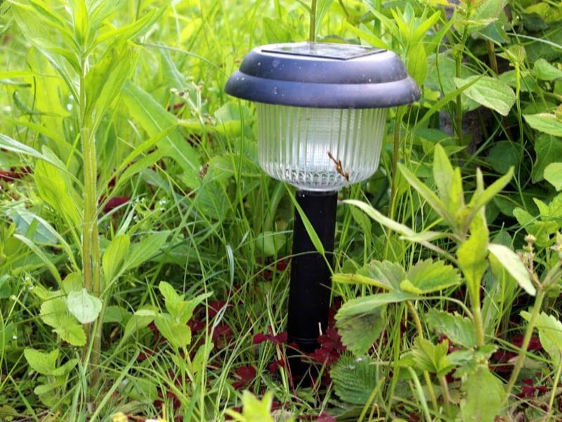 Solar power light sticking out of the grass