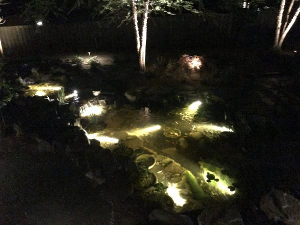 Underwater lighting for Alexandria pond