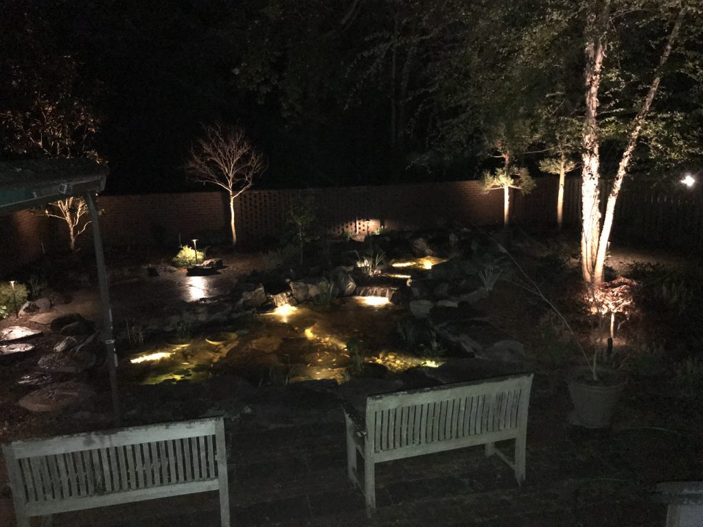 Pleasant View Of Backyard Pond Path And Up Lights