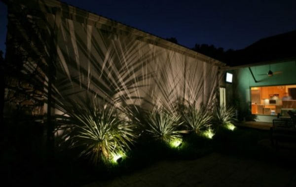 Shadowing landscape lighting technique creating amazing shadows on wall