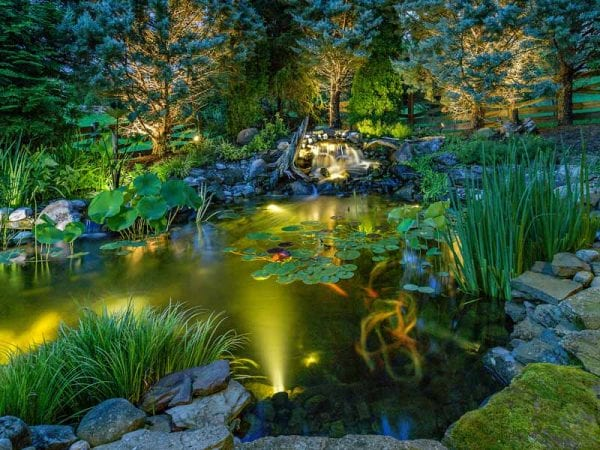 Designing landscape lighting to look as beautiful as this one