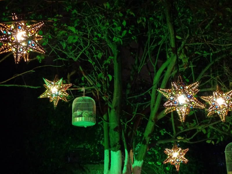 Tree lit by green landscape lights and hanging stars