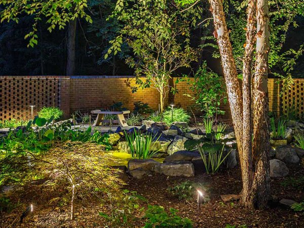 Backyard landscape lighting looking beautiful